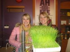 Wheatgrass!